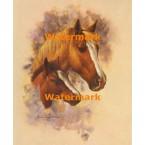 1.  Horses  - #XD10643  -  PRINT