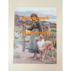 Young Shepherdess  - #XD51257  -  PRINT