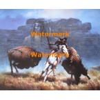 Buffalo Run  - #XADV439A  -  PRINT