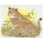 Lion Cubs  - #XKH3110  -  PRINT