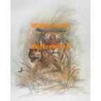 Tiger & Cub  - #XKH4664  -  PRINT