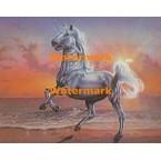 Unicorn  - #XKT2519  -  PRINT