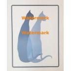 Cats  - XKVH5527  -  PRINT