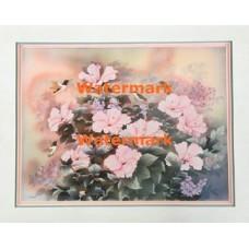 Hummingbird & Hibiscus  - XKVH5751  -  PRINT