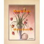 Tulips  - #XBFL2240  -  PRINT