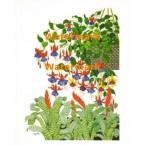 Spring Garden  - #XD8579  -  PRINT