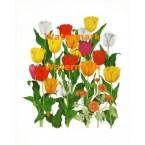 Spring Garden  - #XD8582  -  PRINT