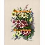 Flowers  -  #XD3448  -  PRINT