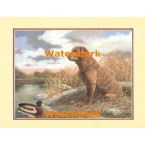 Chesapeake Bay Retriever  - #XKFL3842  -  PRINT