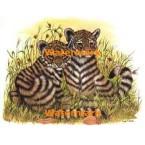 Tiger Cubs  - #XKL3109  -  PRINT