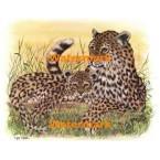 Leopard Cub with Mother  - #XKL3111  -  PRINT