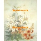 White Lilies  -  #XKL3245  -  PRINT