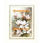 Magnolias I  - #XKRFL4510  -  PRINT