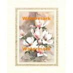Magnolias II  - #XKRFL4511  -  PRINT