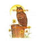 Horned Owl  - #XKL4131  -  PRINT