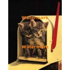 Mailbox Kittens  - #XKL4703  -  PRINT