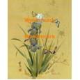 Butterflies & Irises  - XBCH333  -  PRINT