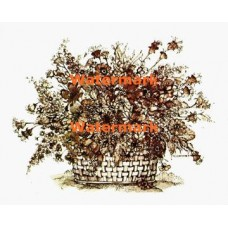 Flowers  - XBFL821  -  PRINT