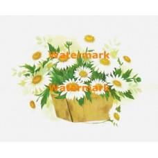 Daisies In Basket  - XBFL960  -  PRINT