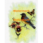 Bird & Butterfly  - XKA236  -  PRINT