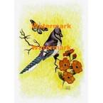 Blue Jay & Butterfly  - XKA239  -  PRINT