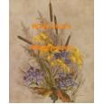 Wild Autumn Flowers  - XKWIA3141  -  PRINT
