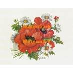 Poppies & Daisies  - XS5750  -  PRINT