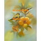 Birds & Flowers  - XS7001  -  PRINT