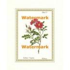 Botanical Flowers IV  - #XAR5167  -  PRINT