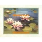 Lily Pond  - #XKFL5362  -  PRINT