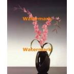 1.  Pink Gladiolus  - #XKL5809  -  PRINT