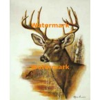 1.  Deer  - #XD50460  -  PRINT