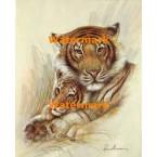 Tigers  - #XD50661  -  PRINT
