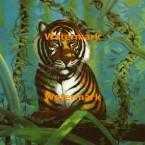 Tiger  - #XD6686  -  PRINT