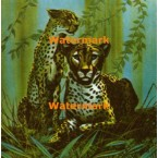Cheetahs  - #XD6688  -  PRINT