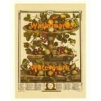 Twelve Months of Fruits:  June 1732  - #XKFL6018  -  PRINT