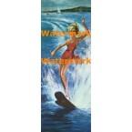 Water Skiing  - #XD4620  -  PRINT