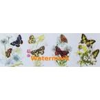 Butterflies  -  #XD7881  -  PRINT