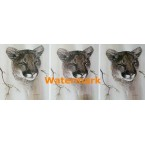 Cougar  - #XD8009  -  PRINT 3 UP DESIGN