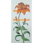 Regal Tiger Lily  -  #XKG1310  -  PRINT