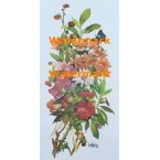 Floral Sonata  -  #XKG4204  -  PRINT
