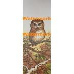 Owl  - #XS2203  -  PRINT