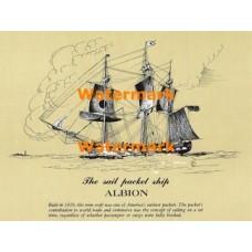 Albion  - XD5454  -  PRINT