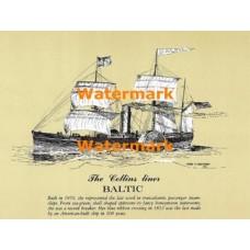 Baltic  - XD5455  -  PRINT
