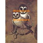 Barn Owls  - XBAN534  -  PRINT