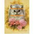 Cat  - #XBAN928  -  PRINT