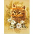 Cat  - #XBAN929  -  PRINT