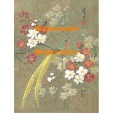 Delicate Blossoms & Bird  - XBCH57  -  PRINT