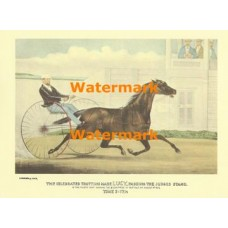 The Celebrated Trotting Mare LUCY, Passing the Judges Stand  - XBCI-19  -  PRINT