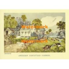 American Homestead Summer  - XBCI-2  -  PRINT